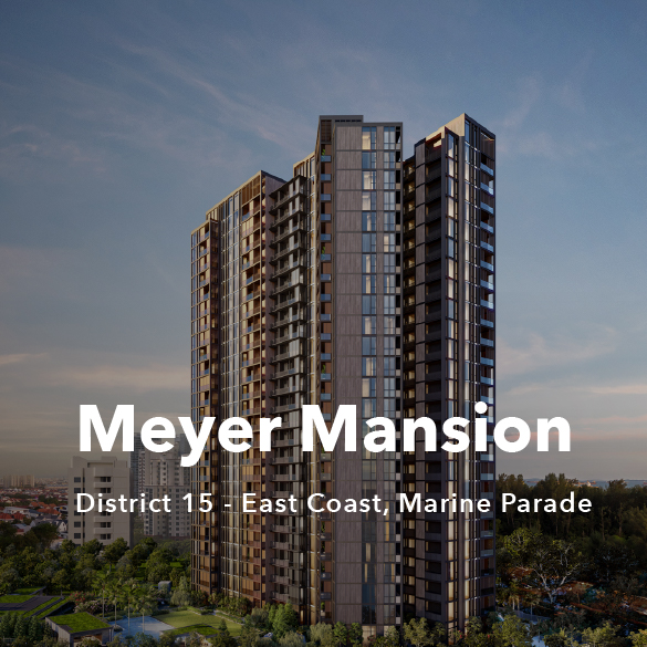 Project Showcase - Meyer Mansion